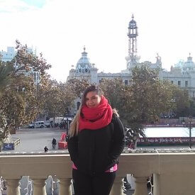 Fallas Tour Valencia por el Centro histórico